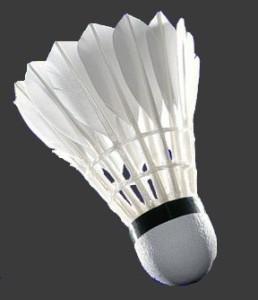 cropped-badminton-micekL.jpg